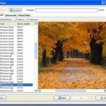 5 Freeware Software to Recover Data