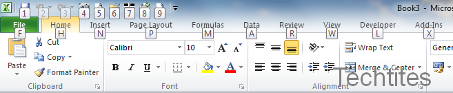 Excel 2010 Ribbon
